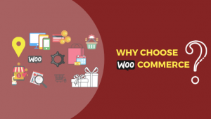 Why Choose Woo-Commerce, woocommerce storefront