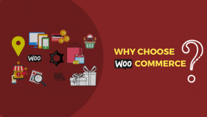 WooCommerce, Ecommerce Development Company, WordPress Developers