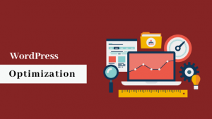Wordpress Optimization, wordpress development services